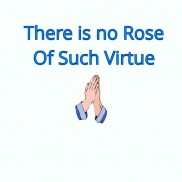 There is no Rose of Such Virtue